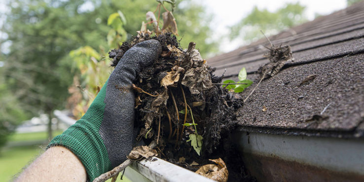 Clean-Your-Gutters-in-Spring-and-Fall