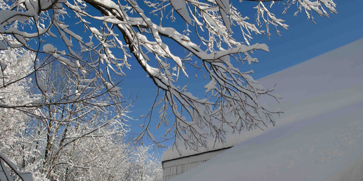 Winter-Checklist-Keep-Your-Branches-Clean